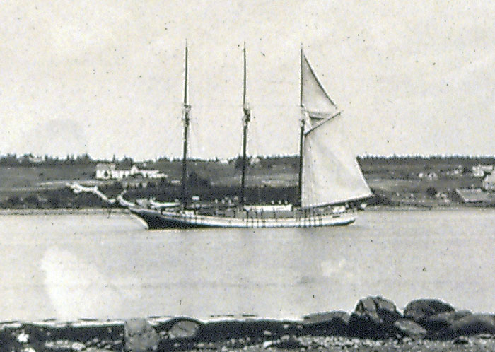 Tern Schooner with Lumber.
