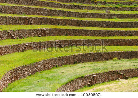 Peru, Moray, Ancient Inca Circular Terraces. Probable There Is The.