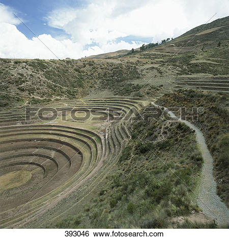 Stock Images of Terraced fields, Inca trail, Peru 393046.