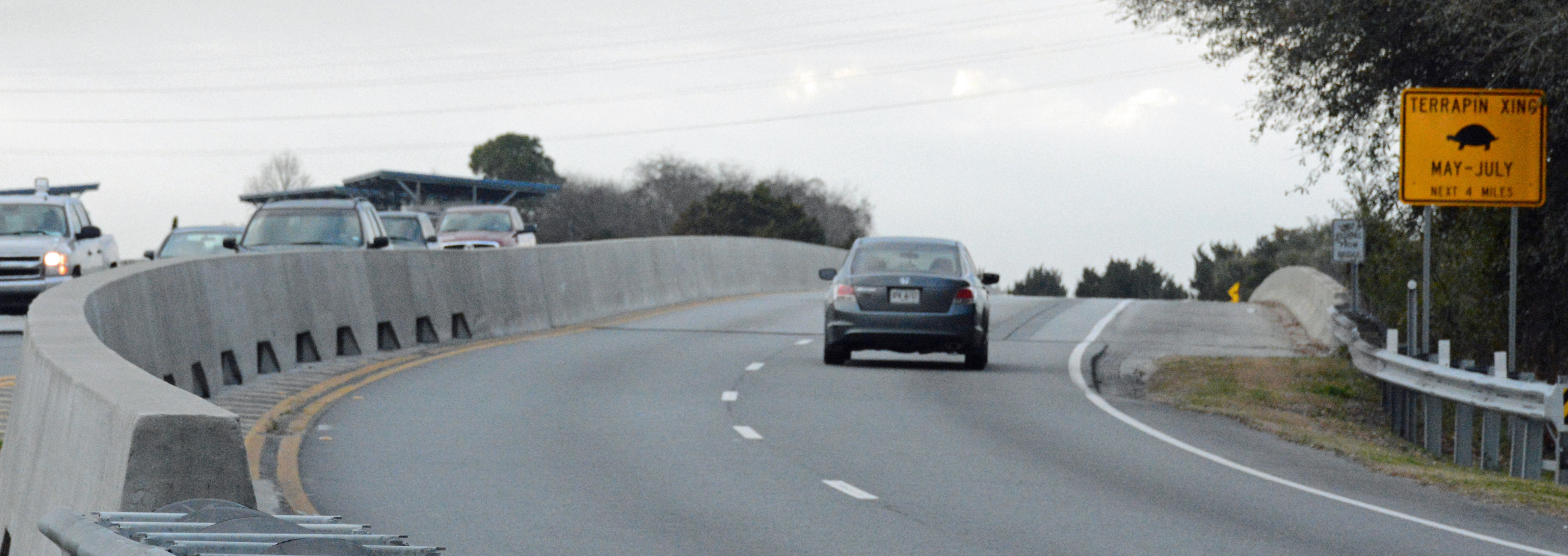 File:Terrapin Crossing, FJ Torras Causeway, St. Simons, Georgia.