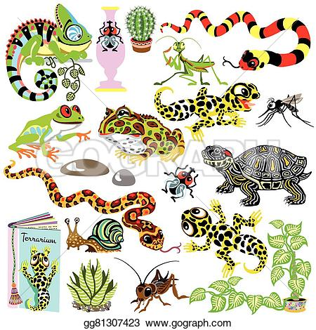 Terrarium animals clipart #14