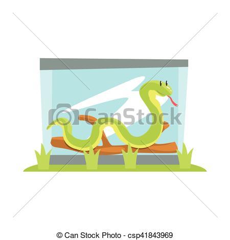 Terrarium animals clipart #15