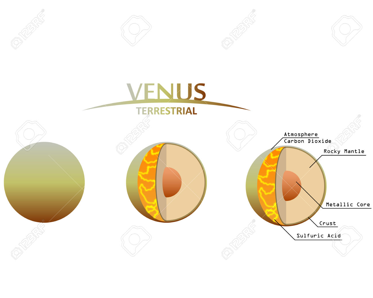 Venus Layers Clipart With Infographics Terrestrial Planet Royalty.