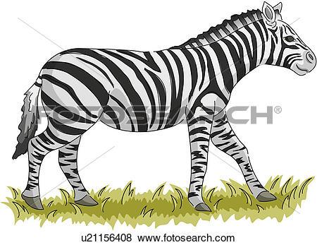 Clip Art of wild animal, vertebrate, zebra, land animal, mammal.