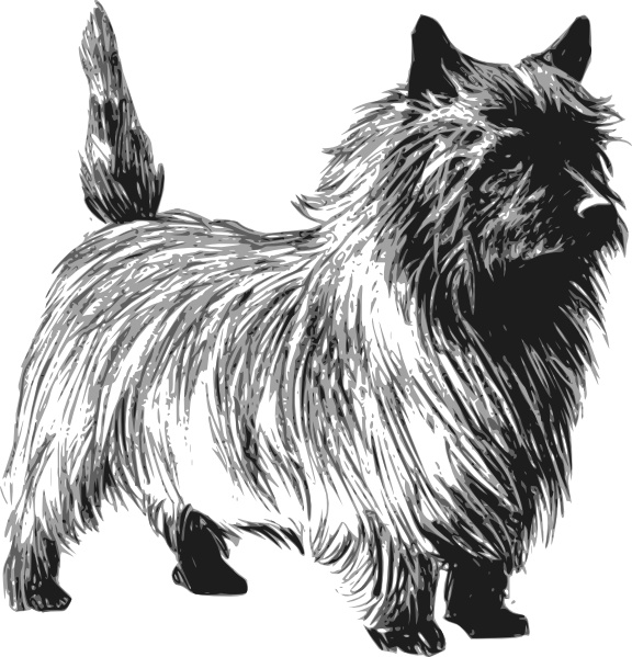 Cairn Terrier clip art Free vector in Open office drawing.