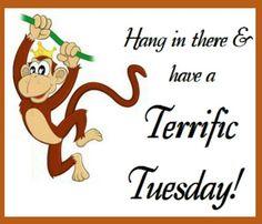 Terrific Tuesdays.