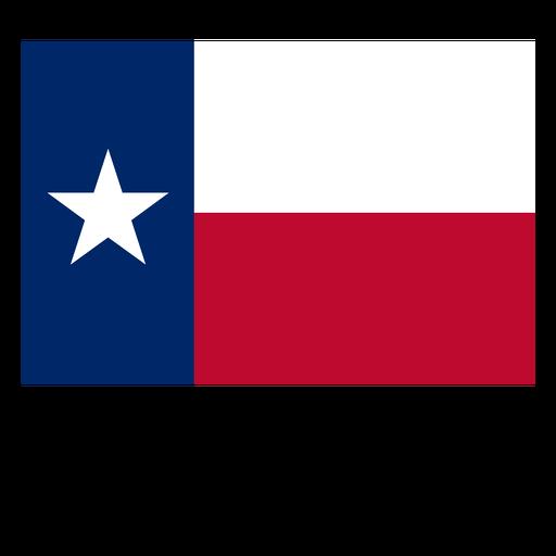 Texas state flag.