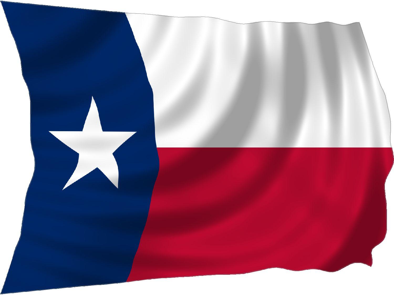 steer head shaped texas flag sticker. preview clipart. flag.