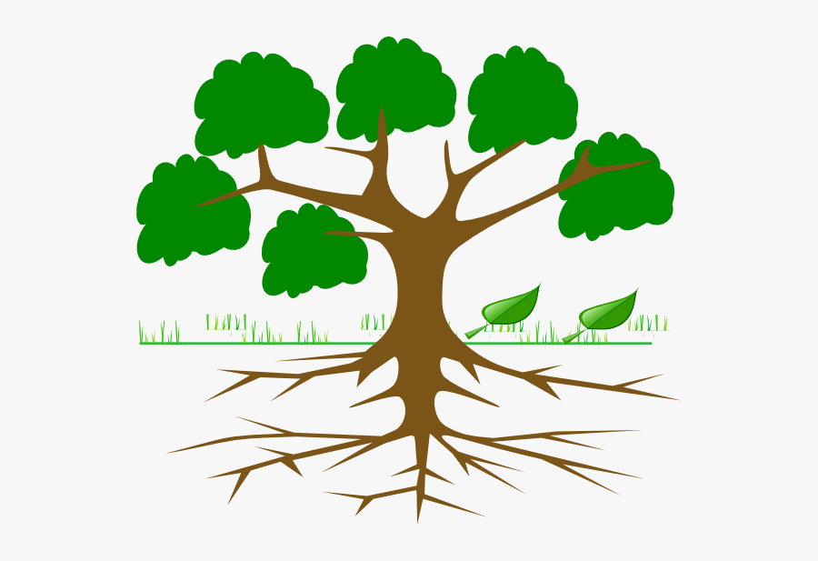 Root Cause Tree Analysis , Free Transparent Clipart.