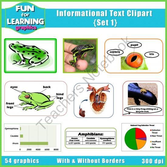 Informational Text Features CLIPART.