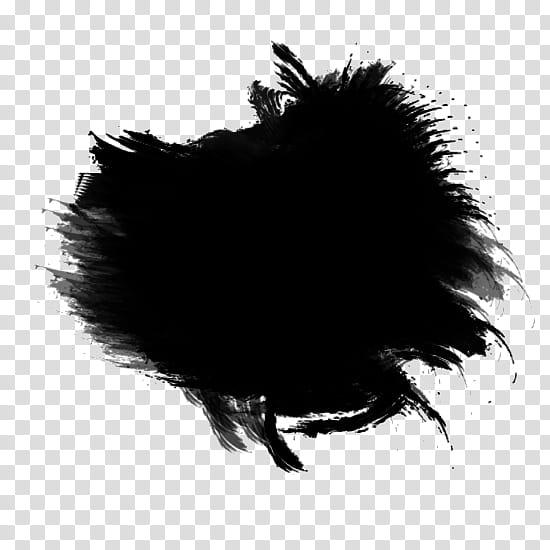 Recursos Texturas Cosas, black and white bird illustration.