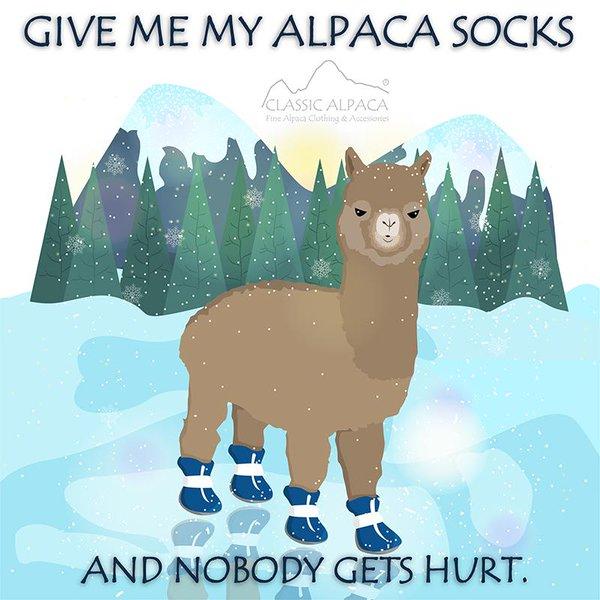Classic Alpaca S.A.C (@ClassicAlpacaUS).