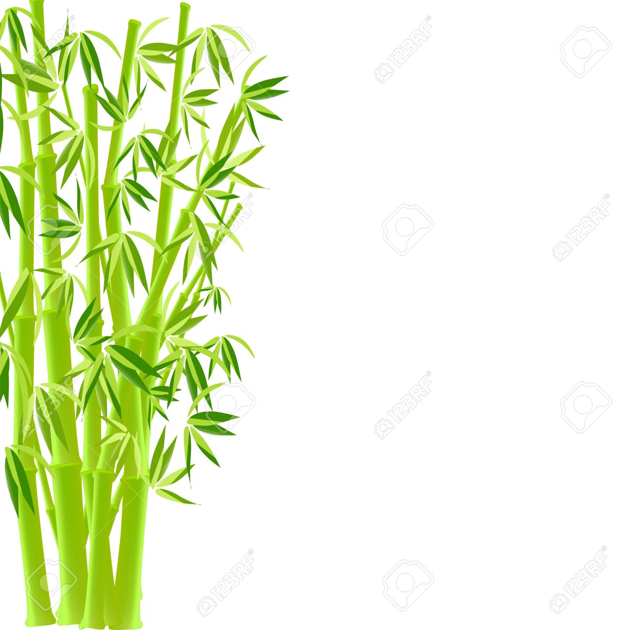 The Bamboo Tree Growth Clipart.