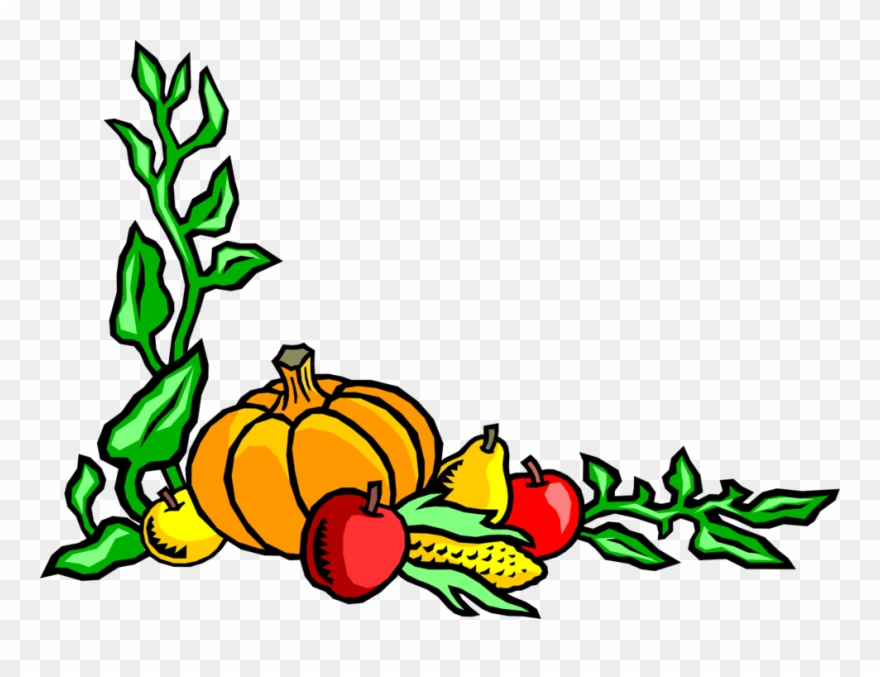 Harvest Corn Apples Vector.