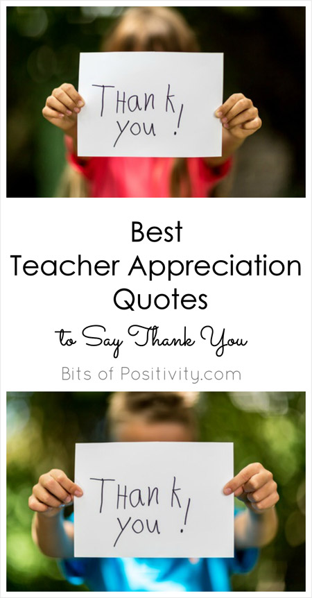Best Teacher Appreciation Quotes to Say Thank You.