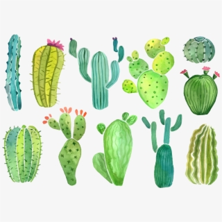 PNG Cartoon Cactus Cliparts & Cartoons Free Download , Page.