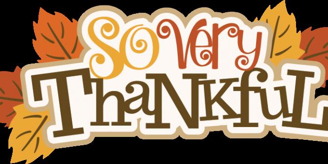 Gratitude & Thankful.