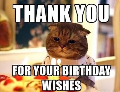 Thank You for the Birthday Wishes Memes.