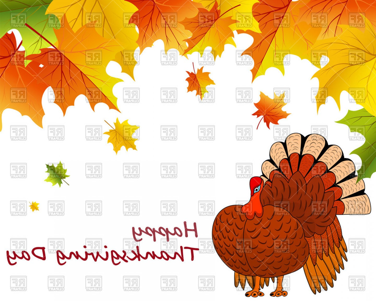Thanksgiving Day Background With Turkey And Maple Leaves.