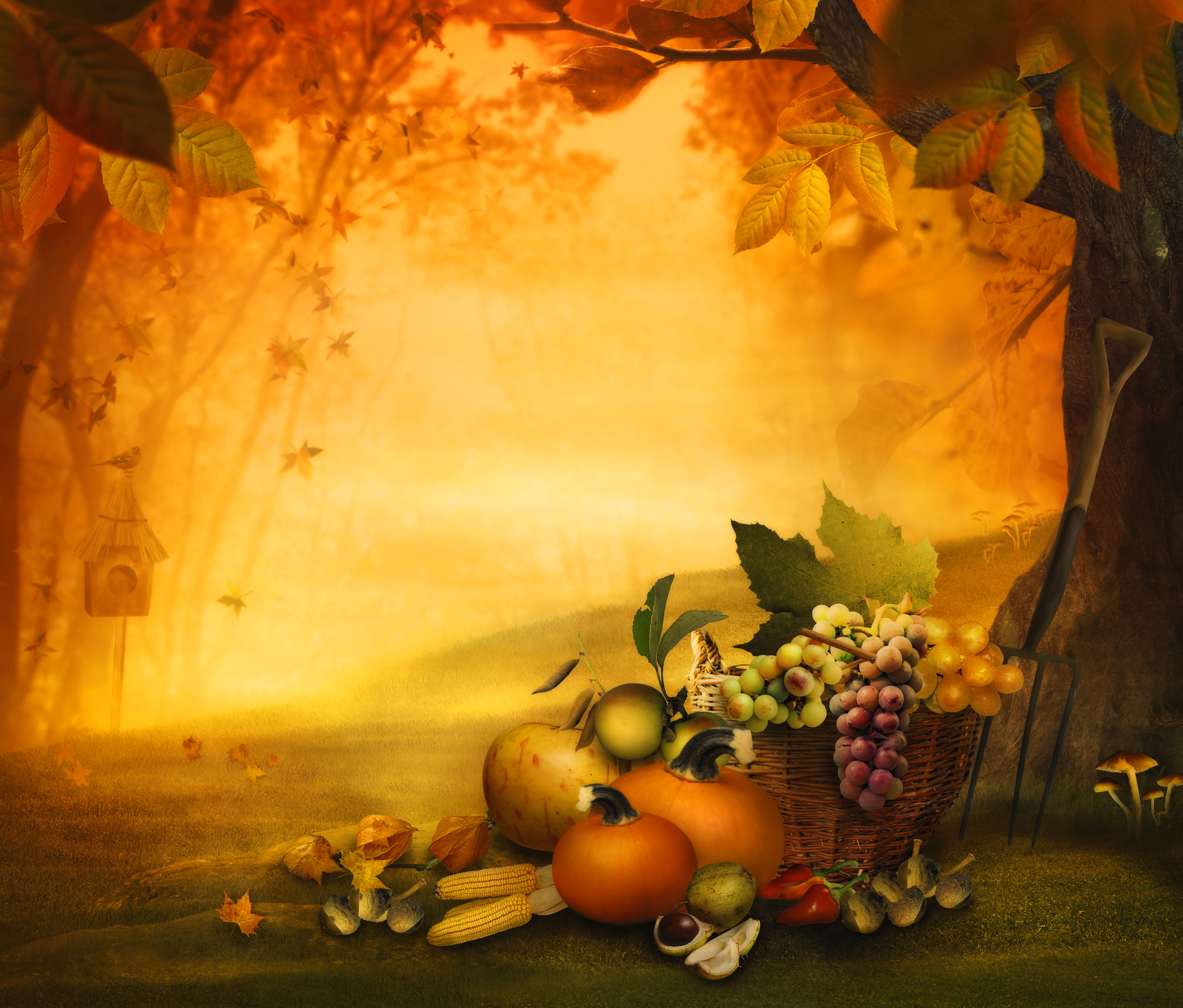 Fall Thanksgiving Background.