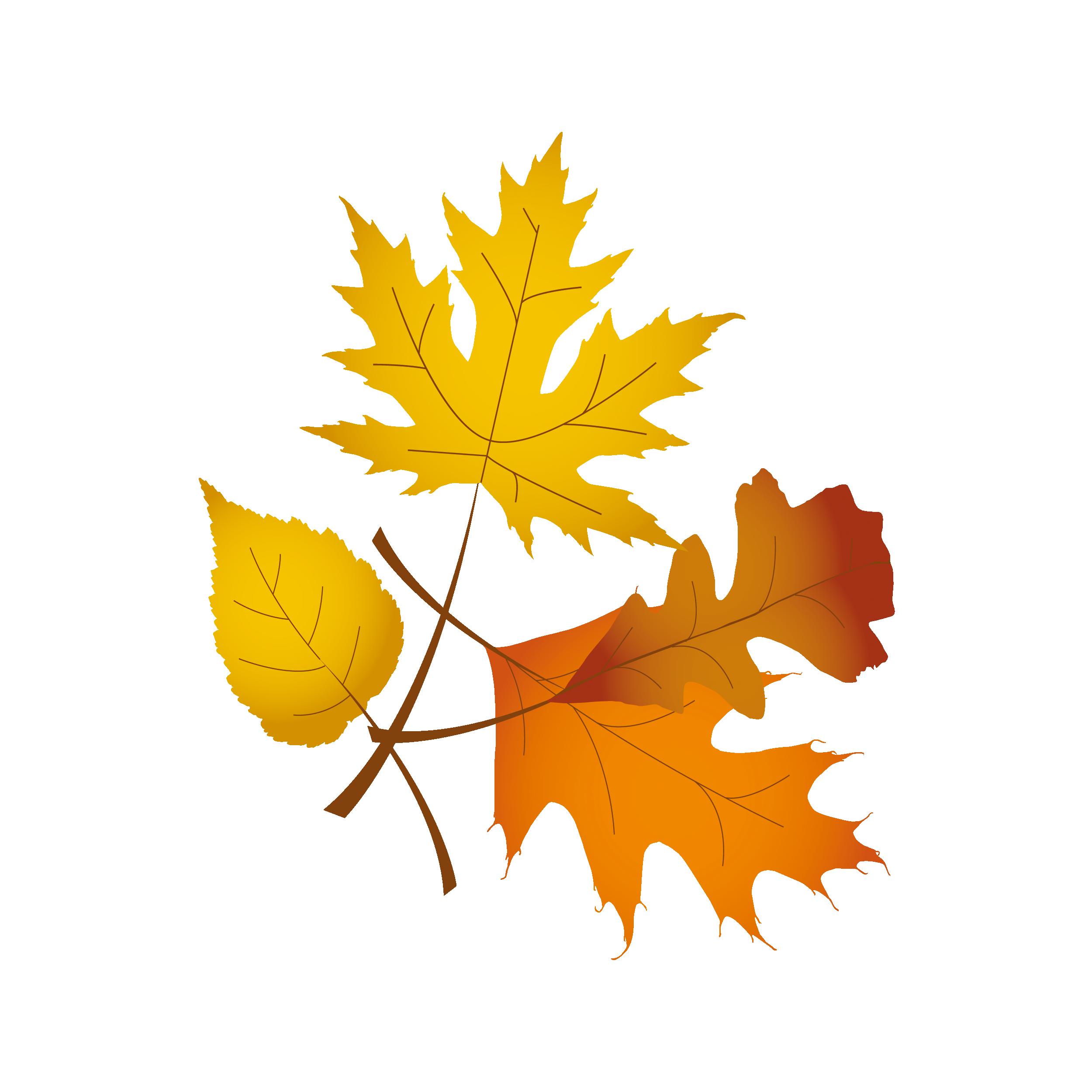 Clipart leaf thanksgiving, Clipart leaf thanksgiving.