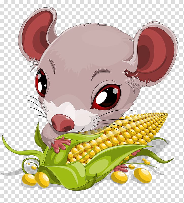 Mouse Cartoon , Rat eating corn transparent background PNG.