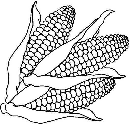 Free coloring pages of corn clipart.
