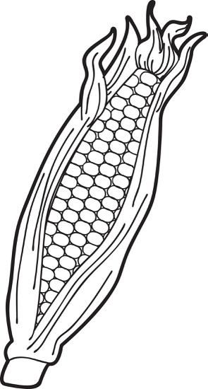 FREE Printable Ear of Corn Coloring Page for Kids.