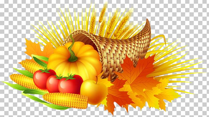 Thanksgiving Cornucopia Pumpkin Pie PNG, Clipart, Blog.