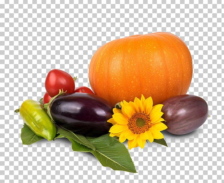 Pumpkin Pie Thanksgiving Dinner PNG, Clipart, Food, Fruit.