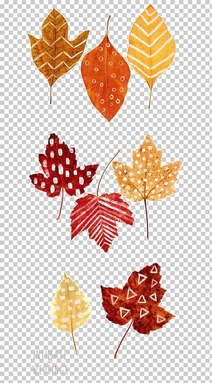 Thanksgiving Autumn leaf color Place card Drawing, Autumn.