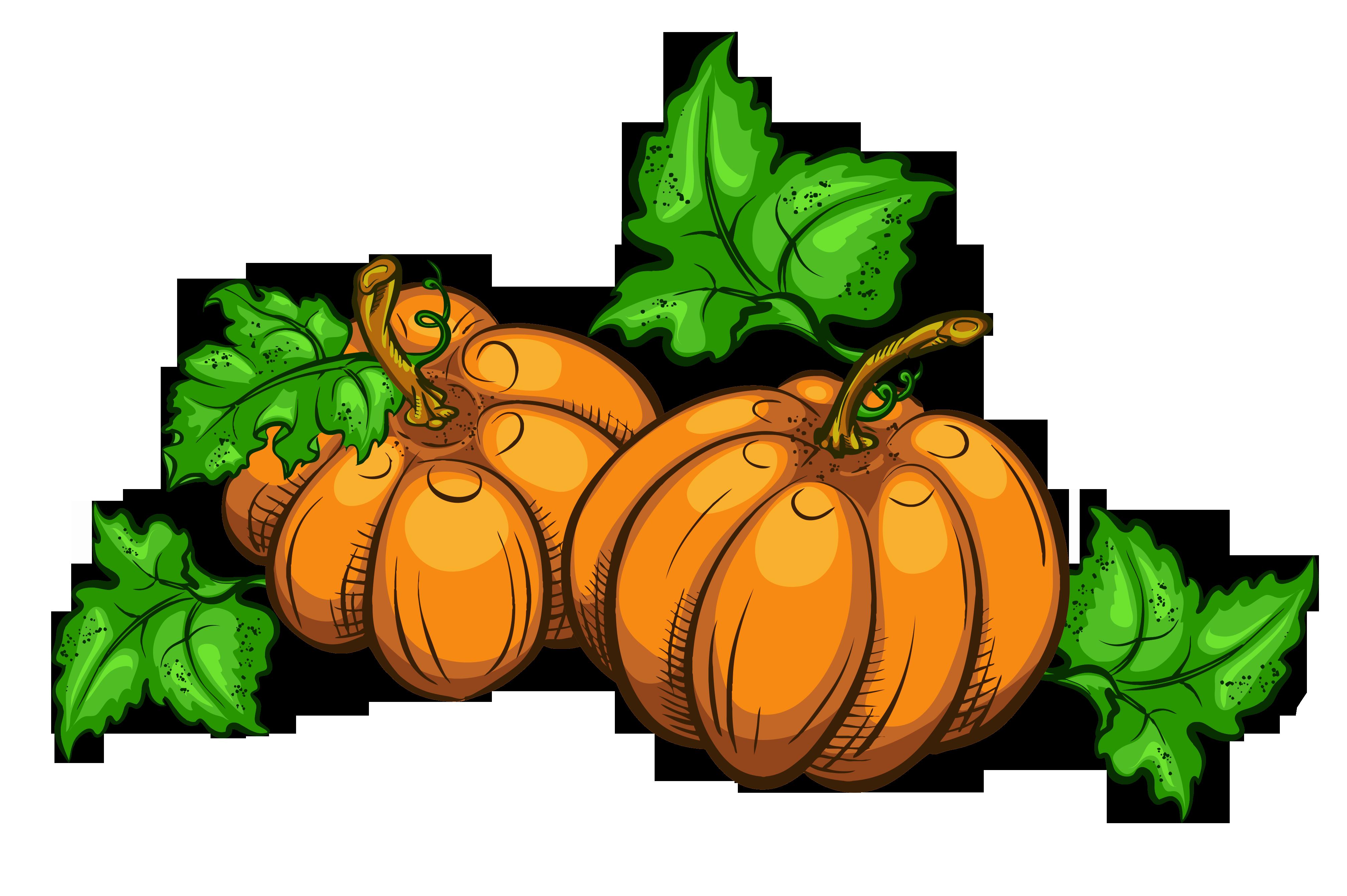 Transparent Pumpkins PNG Clipart Picture.