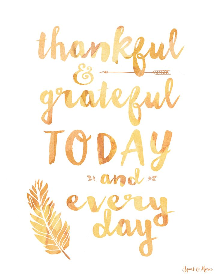 17 Best Thanksgiving Quotes on Pinterest.