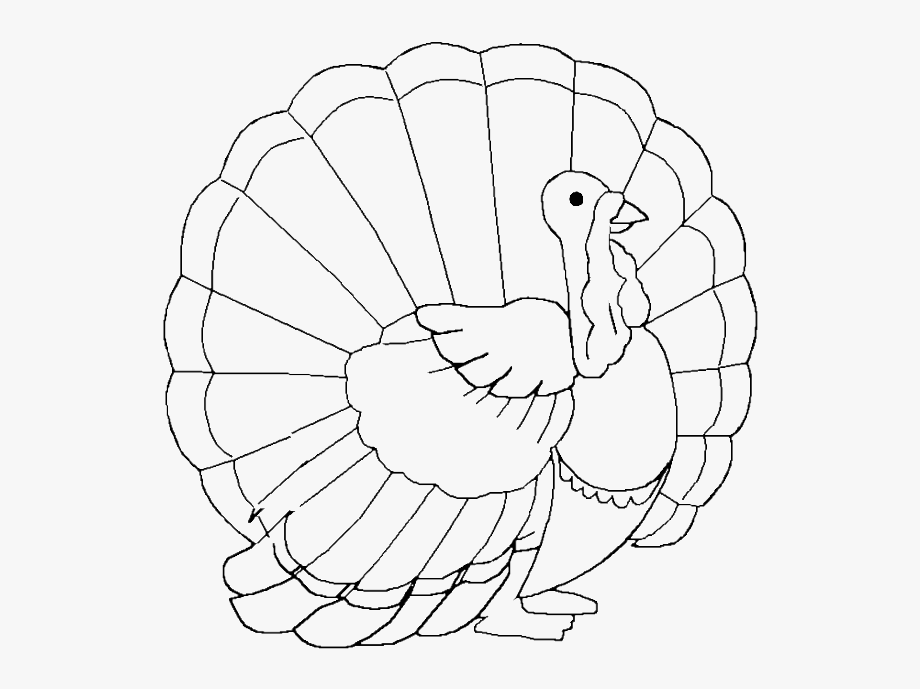 Turkey Coloring Pages Free And Printable Clip Art Royalty.