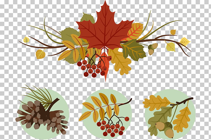 Motif , Thanksgiving decorative motifs PNG clipart.