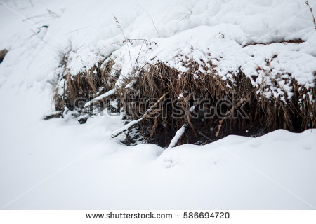 Snow Patches Stock Photos, Royalty.