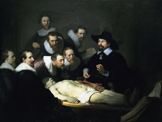 Rembrandt, The Anatomy Lesson of Dr. Tulp (article).