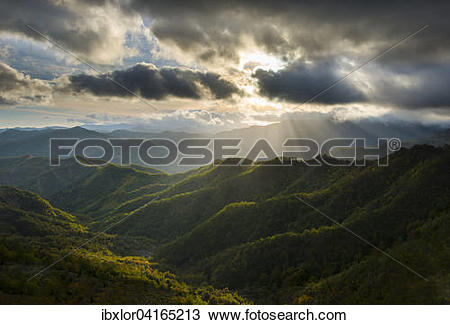Stock Photo of Rays of light on the forests in the Apennines after.