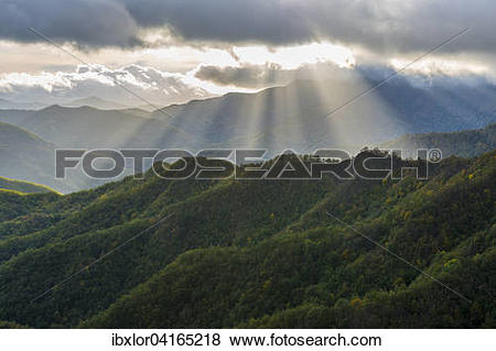 Pictures of Rays of light on the forests in the Apennines after a.