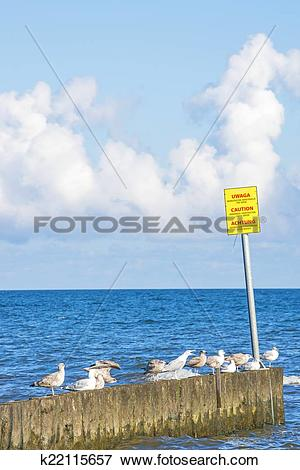 Picture of Groin in the Baltic Sea with danger sign k22115657.