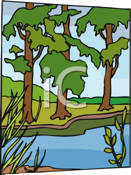 Trees on the Bank of a Stream.