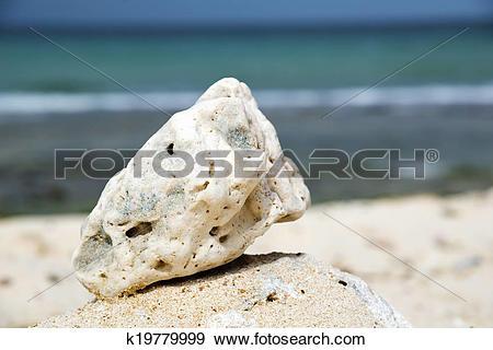 Stock Photograph of Oman beach stone k19779999.