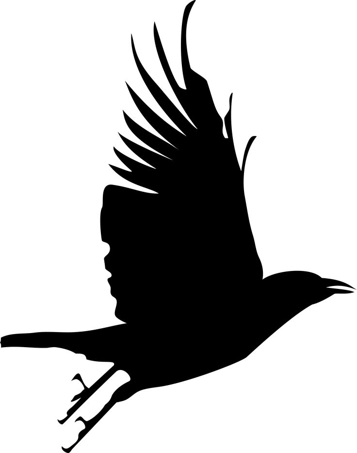 17 Best ideas about Crow Silhouette on Pinterest.
