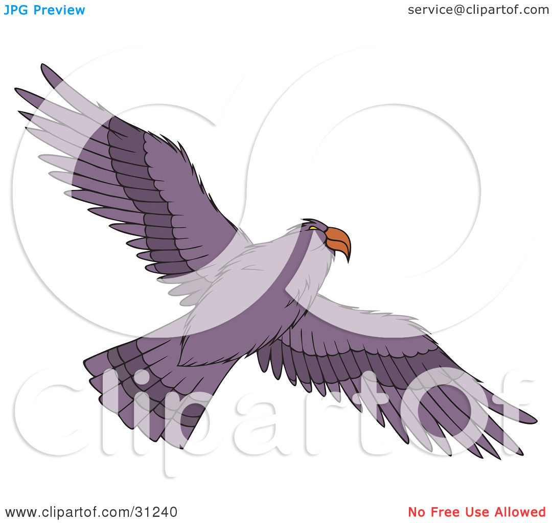 Clipart Illustration of a Flying Purple Hawk As Seen From Below.