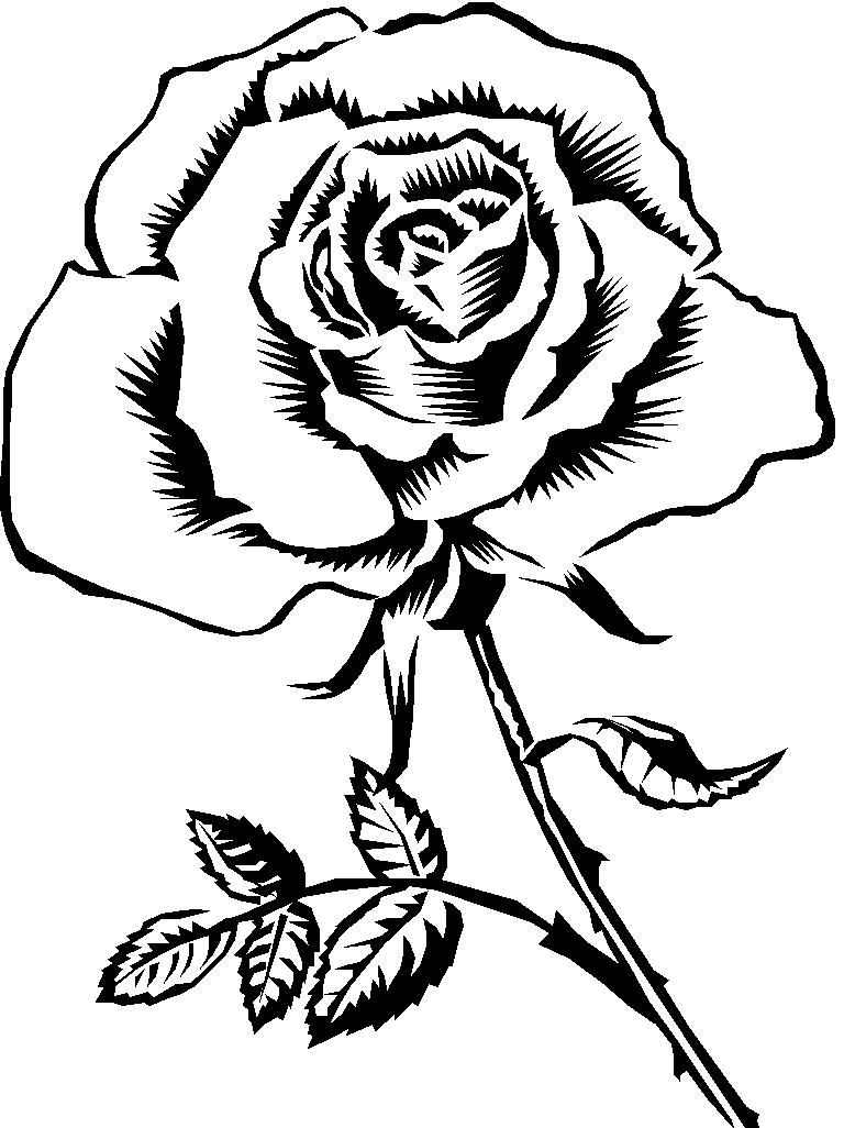 Rose Clipart Black And White.
