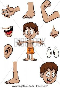 Parts of the body clipart {Science Clip art}.