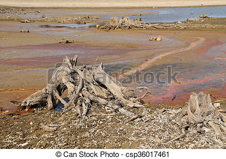 Stock Image of drying pond.