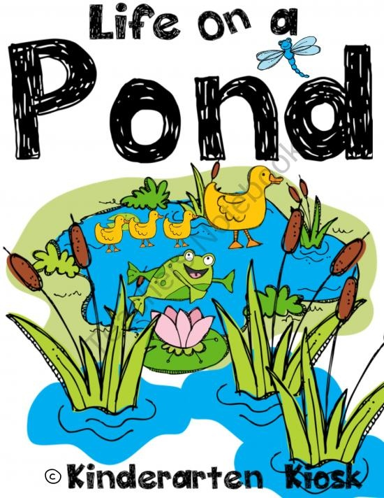 1000+ ideas about Pond Life on Pinterest.