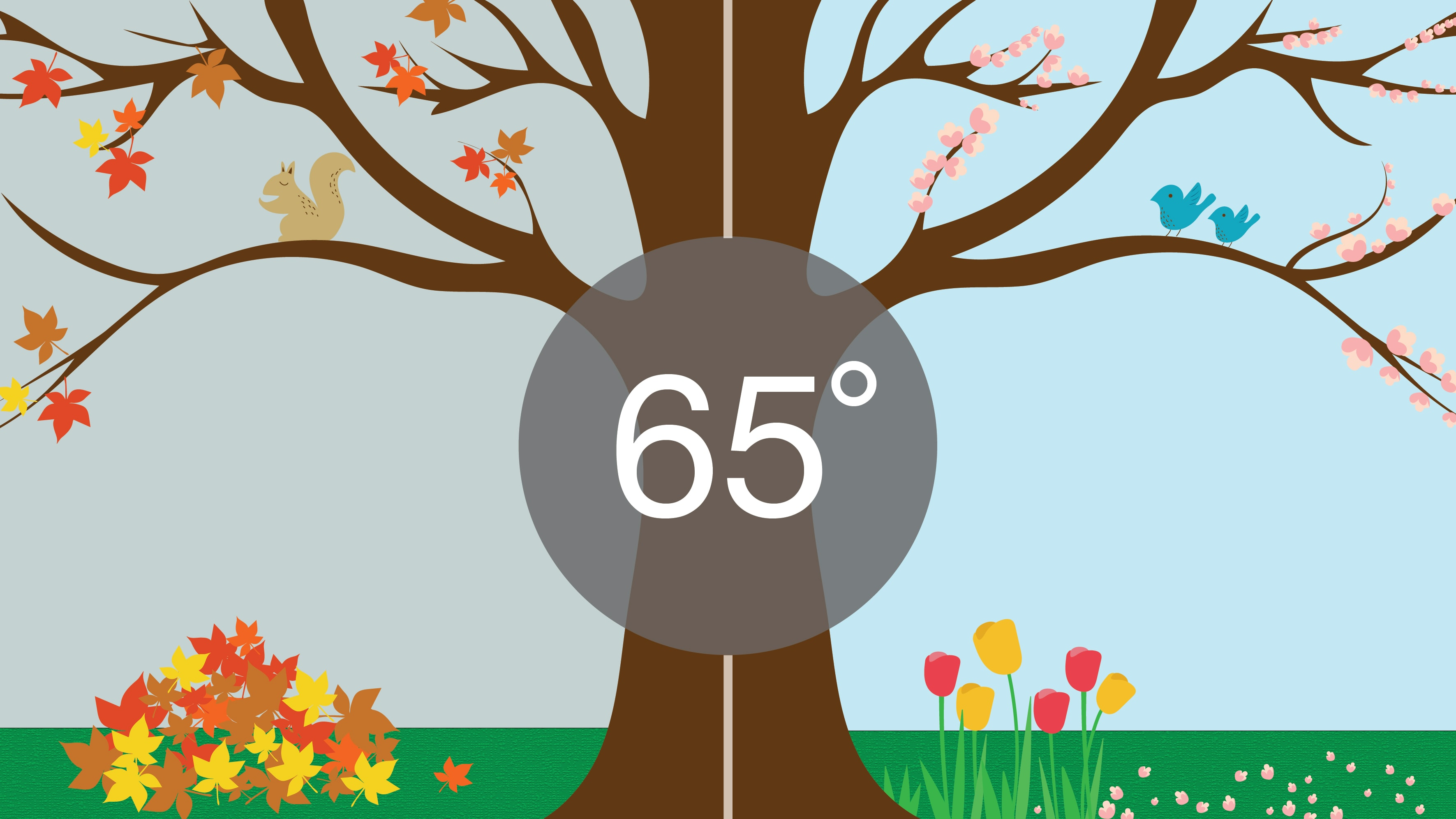 How Body Temperature Acclimates to the Changing of Season.