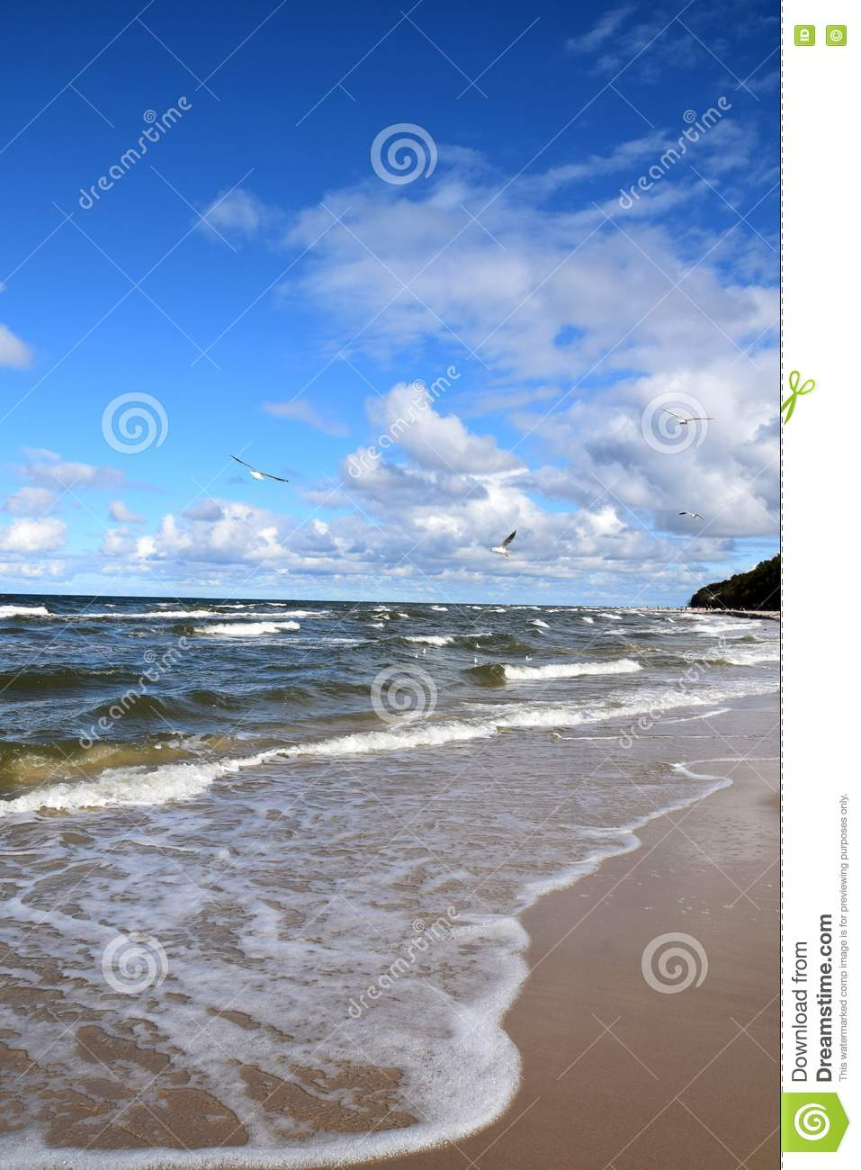 Poland: Coast Of The Baltic Sea Stock Photo.